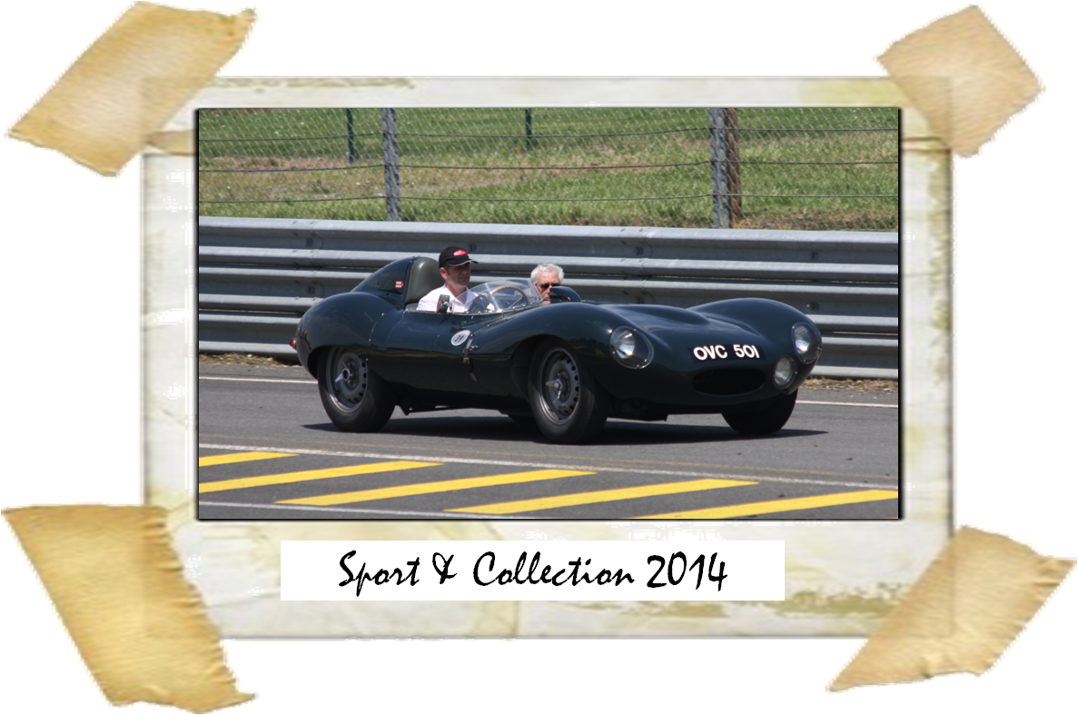 Sport&Collection 2104
