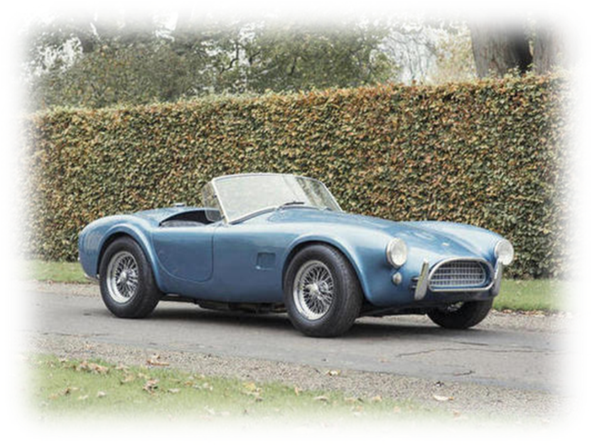 Cobra Bonhams